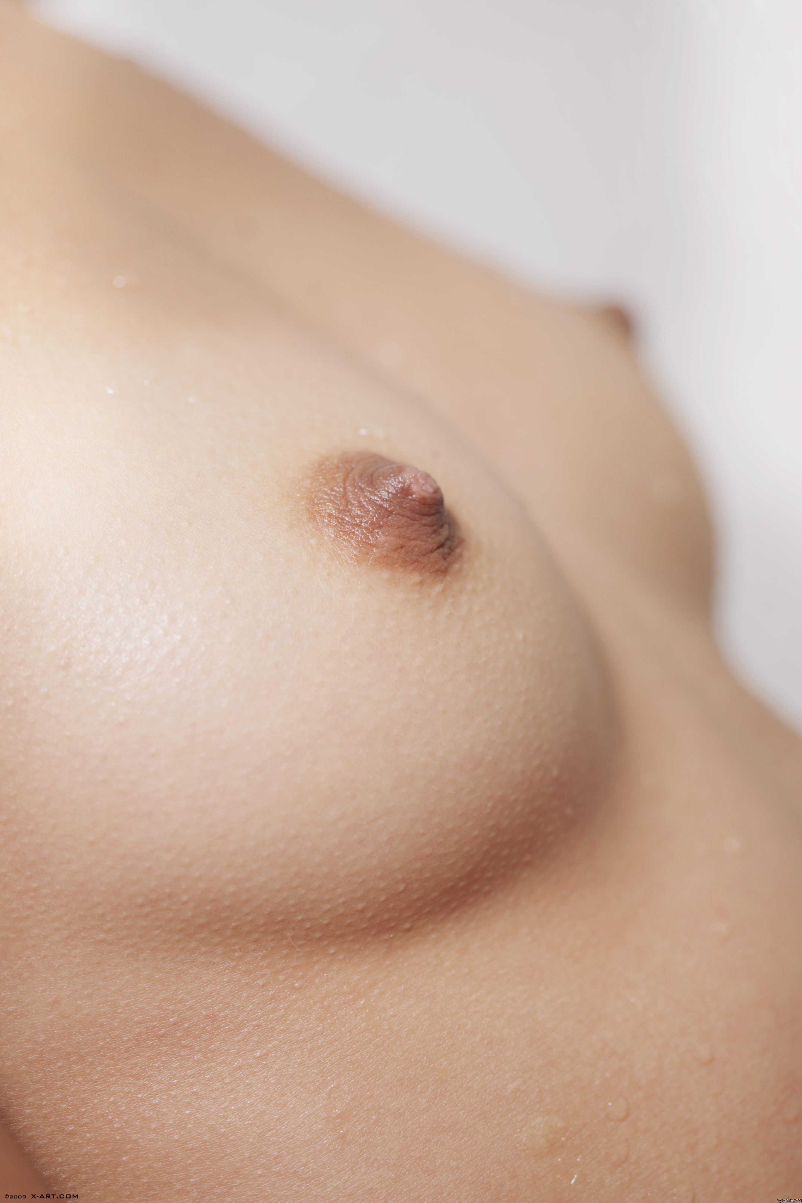 Смотреть на маленькую женскую грудь 18 фотография